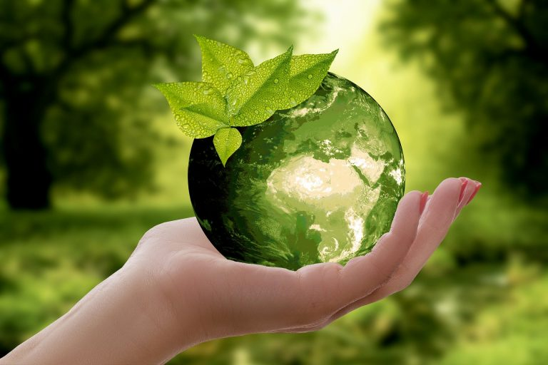 cremas solares ecológicas