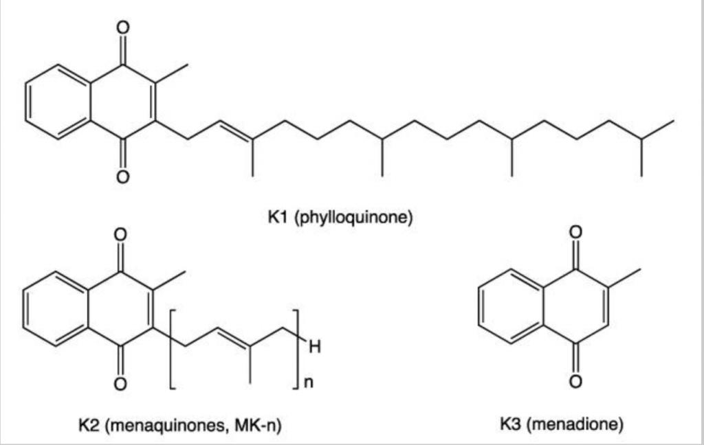 tipos de vitamina K
